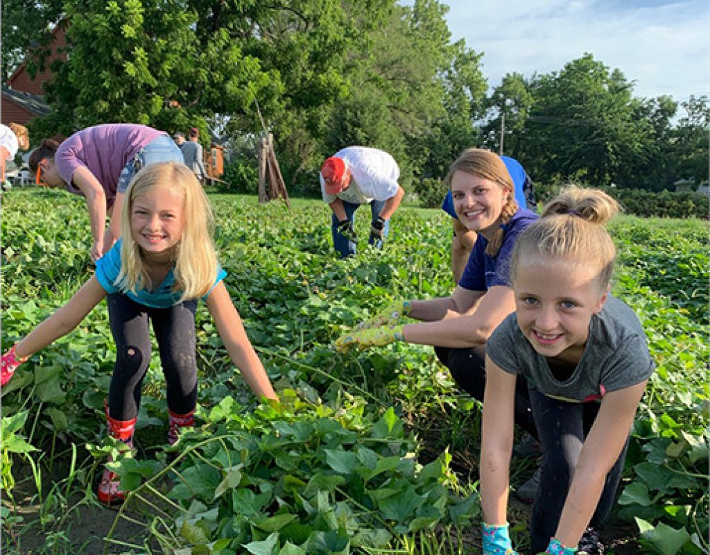 Three girls gleaning in a field