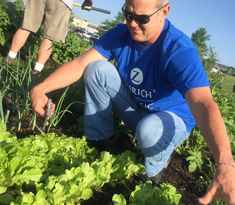 Man in blue shirt knelt down gleaning in a field