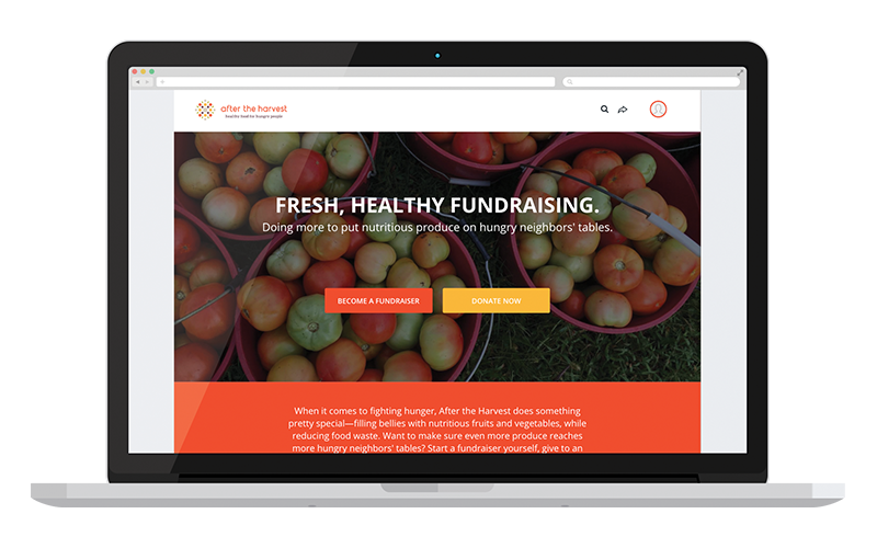 Fundraising page through a macbook view